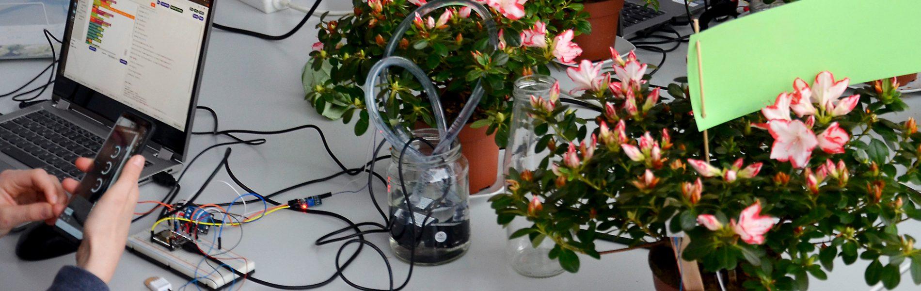 """Dieses Bild zeigt """"Smarte Pflanzen"""" in der botanika Bremen."""